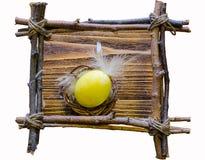 复活节构成用在枝杈框架的一个色的鸡蛋  图库摄影