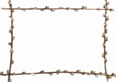 复活节框架杨柳 免版税库存图片