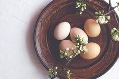 复活节结构的鸡蛋和枝杈有开花的在板材 免版税库存图片