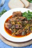 复活节羊羔罗马尼亚炖煮的食物 免版税图库摄影