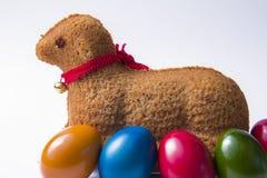 复活节羊羔 库存照片
