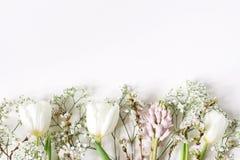 复活节花卉框架,网横幅 春天婚礼,与桃红色风信花,樱花,白色郁金香的生日构成 免版税库存照片