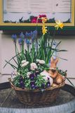 复活节装饰在波茨坦 库存图片