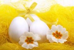复活节装饰用鸡蛋和开花的报春花 图库摄影