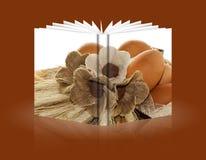 复活节装饰的书 图库摄影