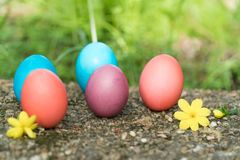 复活节,复活节快乐,五颜六色的复活节彩蛋寻找假日装饰复活节与拷贝空间的概念背景 免版税库存照片