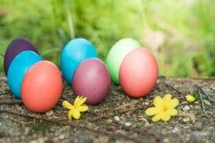 复活节,复活节快乐,五颜六色的复活节彩蛋寻找假日装饰复活节与拷贝空间的概念背景 库存照片