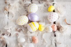 复活节,色的鸡蛋,黄色,白色,白色树,白色背景, feathersa,鸡怂恿,鹌鹑蛋, 图库摄影