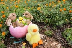 复活节BUNNYS在庭院里 免版税库存照片