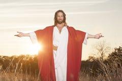 复活节上升的Embrase 免版税库存图片