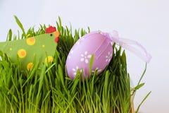复活节与鸡、鸡蛋和草的假日装饰 免版税图库摄影