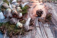 复活节信件装饰用鹌鹑蛋、gnezom、青苔、羽毛、杉木杨柳的锥体和枝杈在木背景的 免版税库存照片