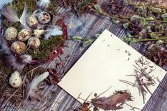 复活节信件装饰用鹌鹑蛋、gnezom、青苔、羽毛、杉木杨柳的锥体和枝杈在木背景的 图库摄影