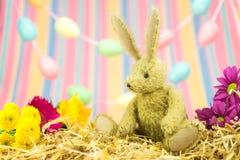 复活节兔子、鲜花、淡色鸡蛋和条纹背景 库存照片