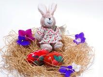 复活节兔子和鸡蛋在巢,隔绝在白色背景 库存图片