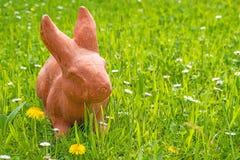 复活节兔子在一个绿色草甸 库存图片