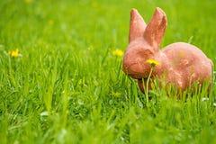 复活节兔子在一个绿色草甸 图库摄影