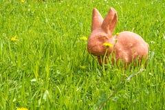 复活节兔子在一个绿色草甸 免版税图库摄影
