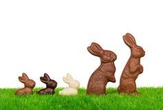 复活节兔子家庭 免版税图库摄影