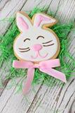 复活节兔子曲奇饼 库存照片