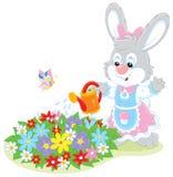 复活节兔子浇灌的花 免版税库存图片