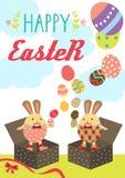 复活节兔子箱子 库存照片