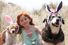 复活节兔子耳朵 免版税库存照片