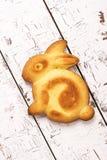 复活节兔子蛋糕 免版税库存照片