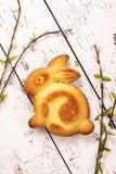 复活节兔子蛋糕 库存图片