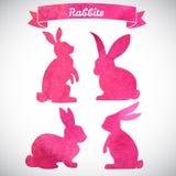 复活节兔子设置了 手拉的剪影和水彩例证 免版税库存照片