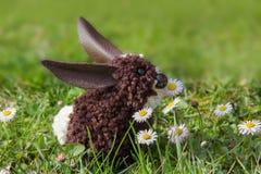 复活节兔子,由绒球做成,坐在草坪 图库摄影