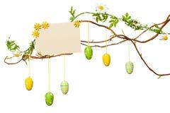 复活节分支-用复活节彩蛋,空白的标志/卡片,被隔绝 免版税图库摄影