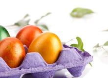 复活节卡片用鸡蛋和叶子 免版税库存图片