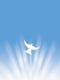 复活节圣灵和平白色鸠飞行通过太阳发出光线例证 免版税库存照片