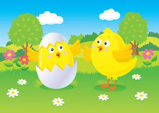 复活节小鸡场面 库存照片