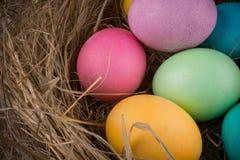 复活节巢用色的鸡蛋 库存照片