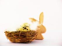 复活节巢(13) 免版税库存图片