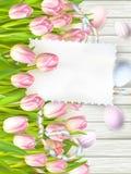 复活节彩蛋、郁金香和空的葡萄酒卡片 10 eps 免版税库存照片