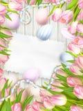 复活节彩蛋、郁金香和空的葡萄酒卡片 10 eps 免版税库存图片