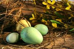 复活节彩蛋一点 图库摄影