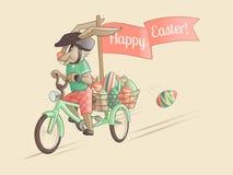 复活节彩蛋兔子司机  免版税库存图片
