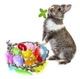 复活节彩蛋和兔子 库存照片