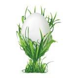 复活节彩蛋和在白色背景草隔绝的蛋杯 Ve 免版税库存图片