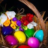 复活节彩蛋和小苍兰在篮子 免版税图库摄影