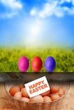 复活节彩蛋和日出 免版税库存照片