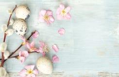 复活节彩蛋和樱花减速火箭的蓝色背景 库存图片