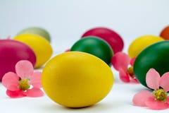复活节彩蛋多彩多姿在桃红色花之间 库存照片