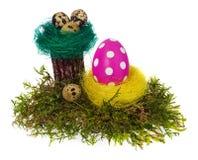 复活节彩蛋手画多彩多姿在鸟巢,森林青苔, 库存照片