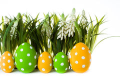 复活节彩蛋放牧隐藏 免版税库存图片