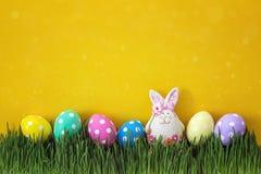 复活节彩蛋用在新鲜的绿草的一个滑稽的野兔在黄色bac 免版税库存照片